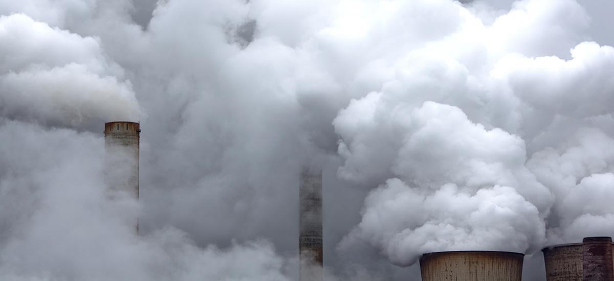 The Carbon Tax: Understanding Negative Externalities